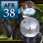 AFR 38
